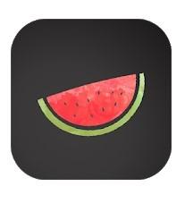 VPN Melon in Windows