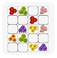 Brain Teasers - Flower Match